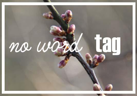 no word tag