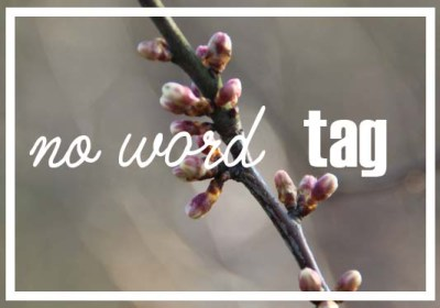 no word tag
