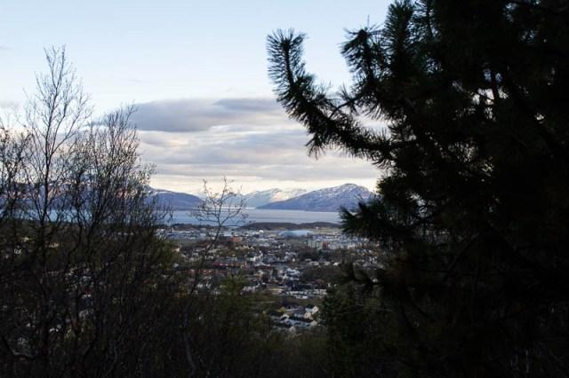 Bodø 4