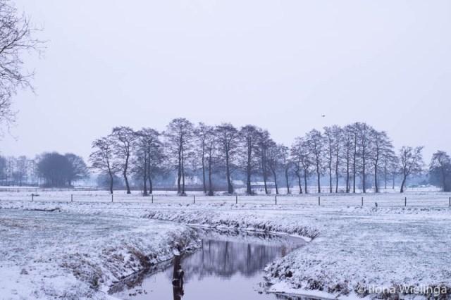 koud 5 fotografie winter sneeuw landschap landschapsfotografie