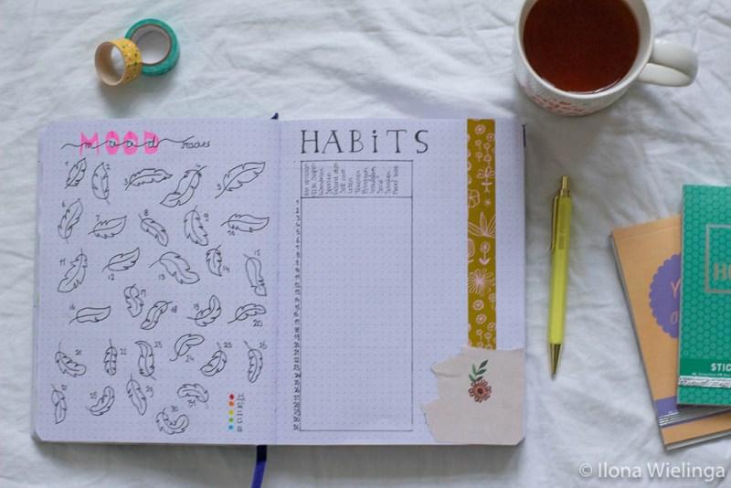 bullet journal mei habit tracker moodtracker