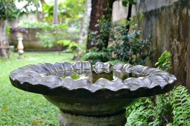 Ornaments In The Garden: Bird Baths