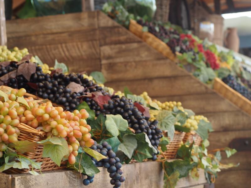 expo itálie víno