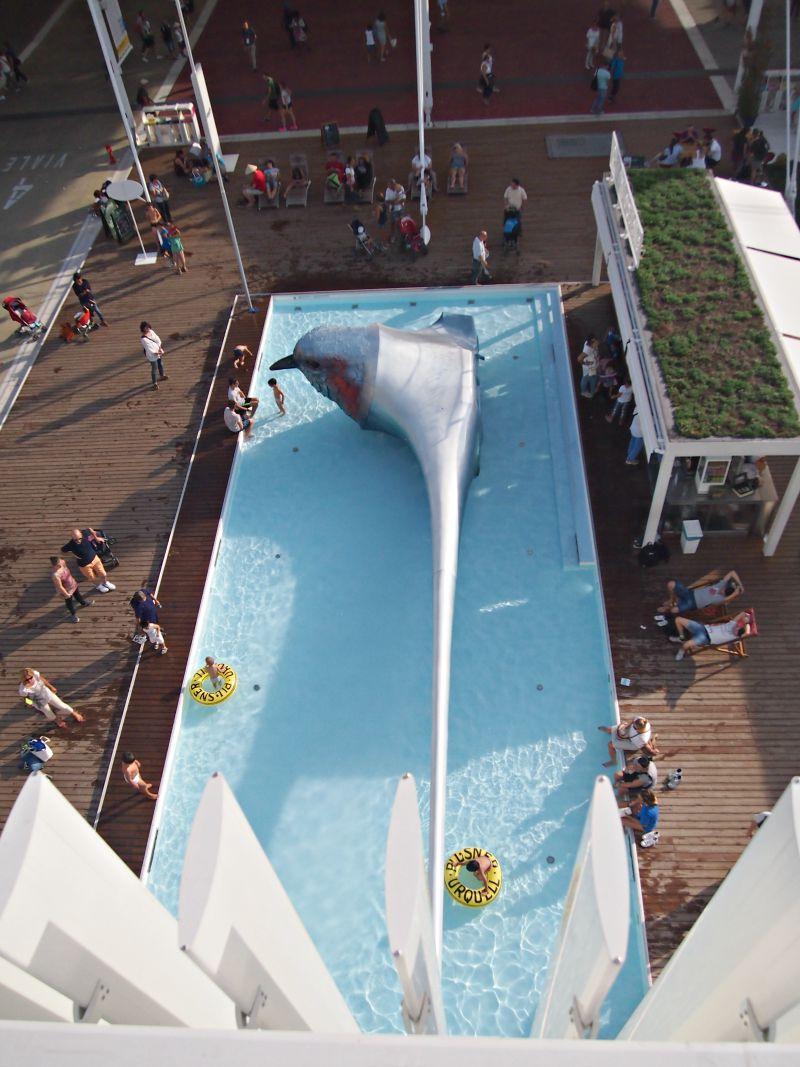 český bazén z výšky