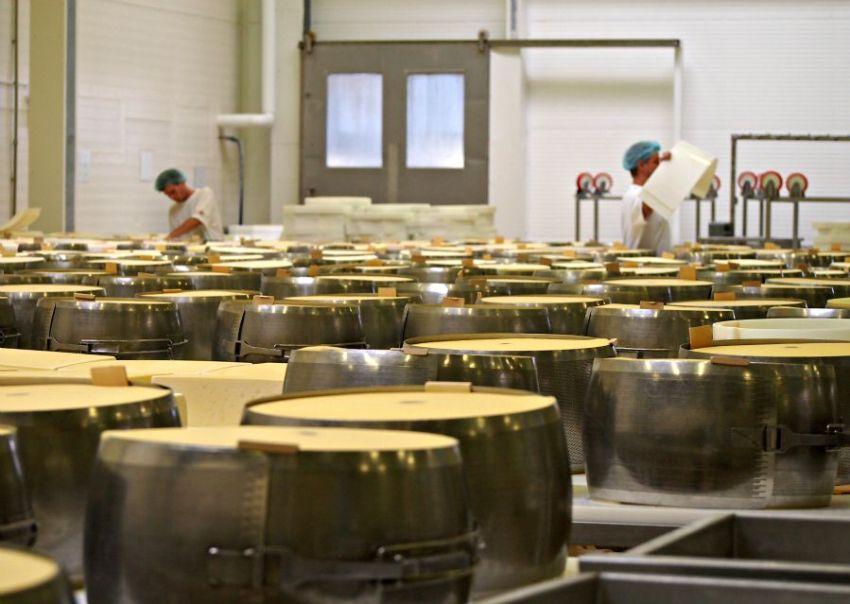 sýr gran moravia v kovových formách