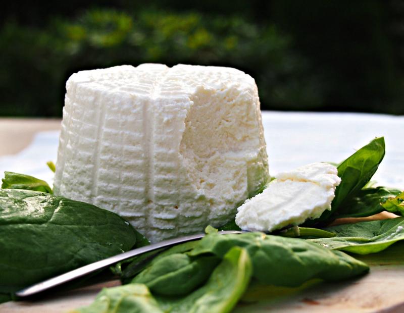 sýr ricotta