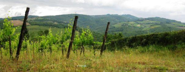 dovolená toskánsko