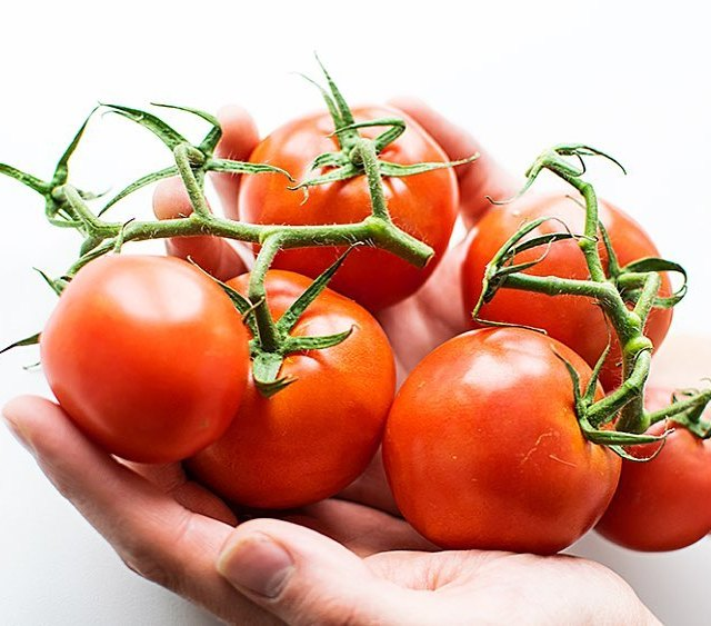Rajata Skvl ingredience na italskou kuchyni!!! rajcata pomodoro sugo rajcatovaomackahellip