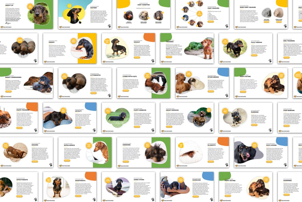 A preview of pages from the Dachshund E-Guide