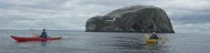 Dunedin Sea Kayaking
