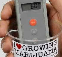 Test outdoor soil mixture cannabis