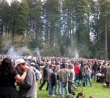 What does 420 mean today- 420 festival