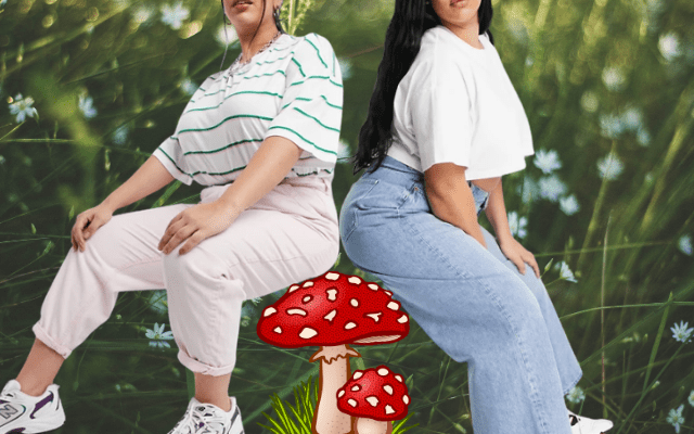 curvy plus jeans for spring