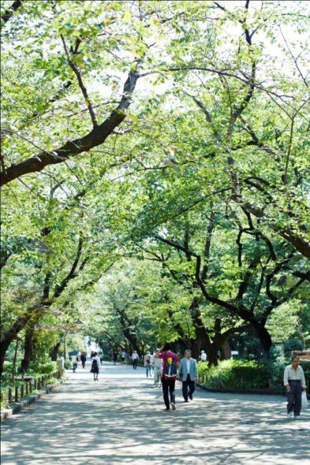 Ueno_Onshi Park (2)