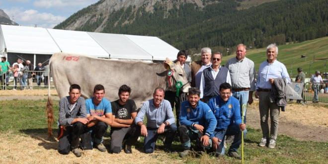 51a Mostra Zootecnica del Bestiame e Alpen Fest 2018