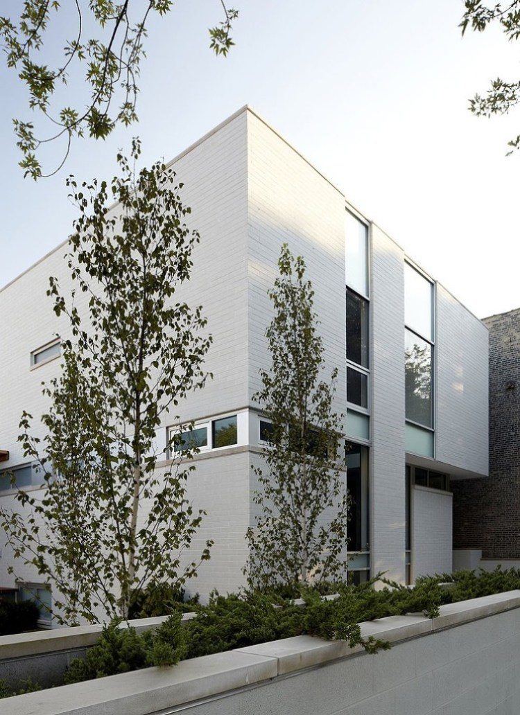 Bucktown Three House by Studio Dwell Architects