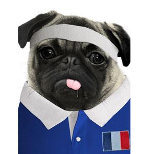 France Rugby Pug T Shirt Adult Unisex I Love Pugs