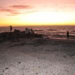 Blind Pass shells at sunset