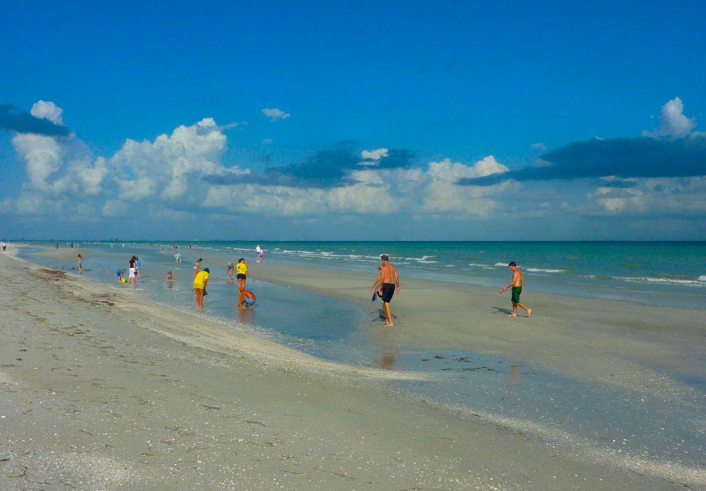 Low Tide Sand Bars