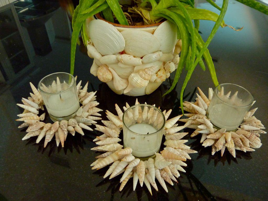 She Decorates with Seashells