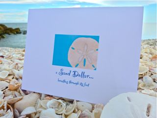 Write From The Beach GiveAway!