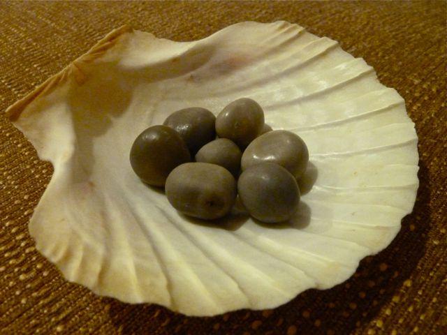 Sanibel Sea Beans