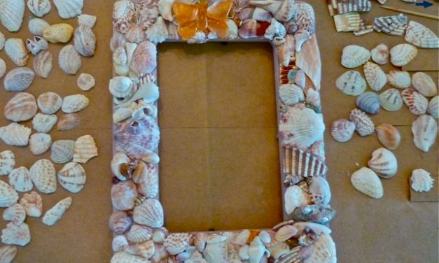 Imperfect Seashell Creativity