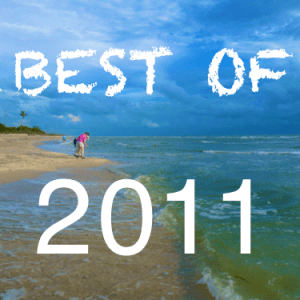 Best-of-2011 beachcombing