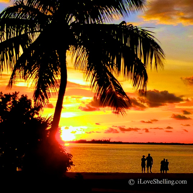 Sunsets Of Sanibel Island
