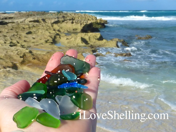 seaglass beach cat island bahamas