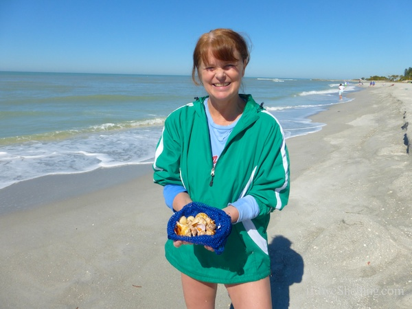Sunny Day Seashells On Sanibel