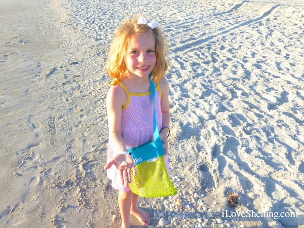 Evening Shelling Vacation On Captiva