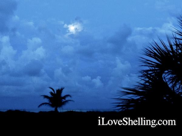Full Moon Rises, Shelling Tide Lowers