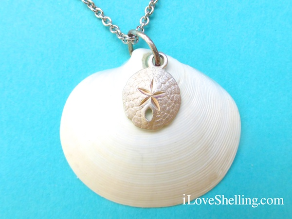 seashell necklace with silver charm