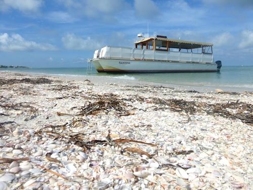 Captiva Cruises shelling boat Santiva