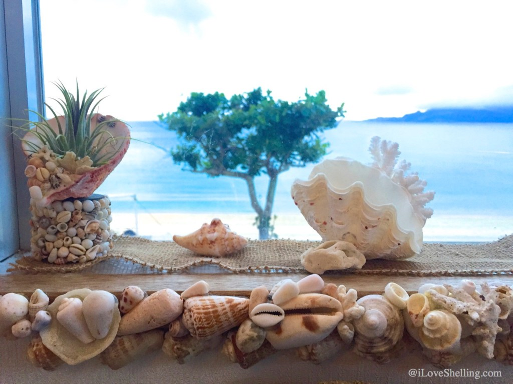 Island Cafe Marine Bar seashells Okinawa Japan