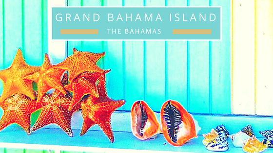 Grand Bahama Island seashells beach combing