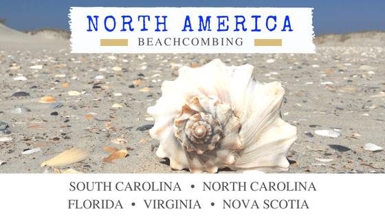 North America beachcombing and shelling travel destinations