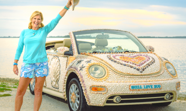 Shell Love Bug has been Freed