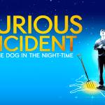 Carré presenteert nieuwe Broadway aan de Amstel: THE CURIOUS INCIDENT OF THE DOG IN THE NIGHT-TIME