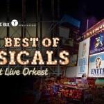 Mozart-revelatie Ruben Van keer ook in ultiem musicalspektakel 'The Best of Musicals'