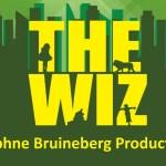 AUDITIE OPROEP: THE WIZ (Zaandam)