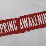 Kaartverkoop Spring Awakening in DeLaMar West aangekondigd