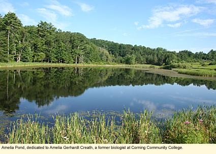 Finger Lakes New York Nature Centers Spencer Crest