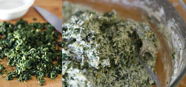 ricetta salata con la ricotta
