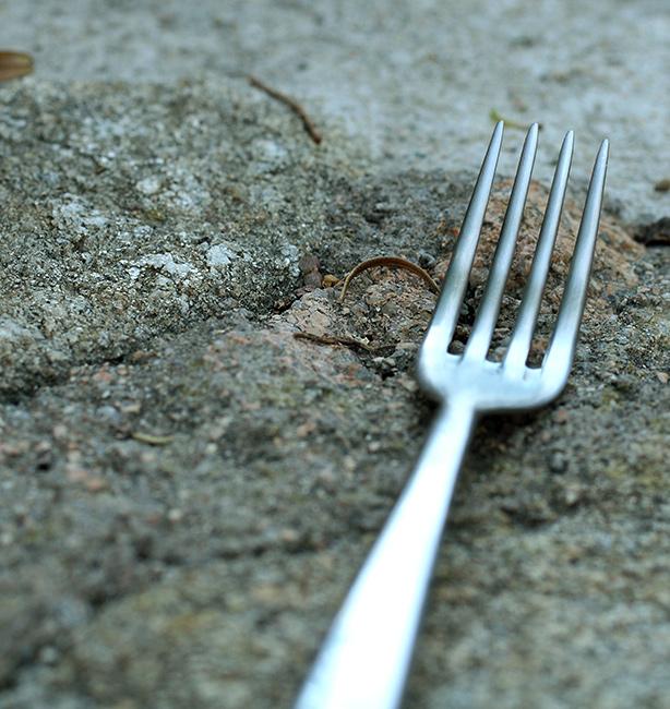il richiamo della forchetta