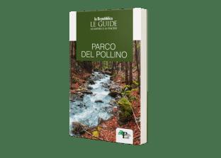 Guida Pollino