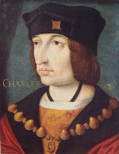 Carlo VIII, in questo ritratto ufficiale, ci ha quell'ineffabile espressione del figlio di capitano d'industria un attimo prima di intonare lodi alla meritocrazia.