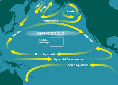 North Pacific Subtropical Convergence Zone - Ocean Cleanup