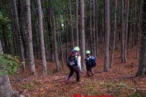 CNSAS_ricerche-il-ceppo_bosco-sopra-il-luogo-di-ritrovamento